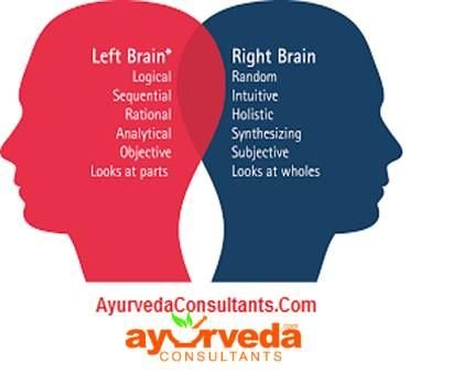 THE ART OF ABILITY https://www.facebook.com/ayurvedaconsultants<br />Lets know How to Difference Between Left And Right Brain